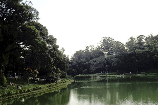parque-da-aclimacao